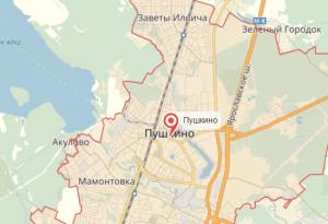 Нарколог на дом в Пушкино