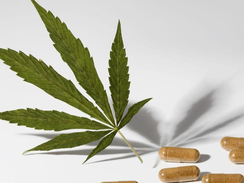 Виды растительных наркотиков